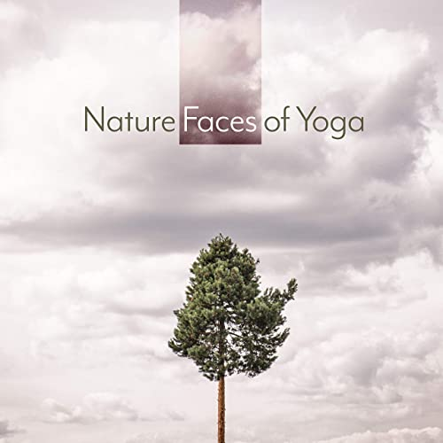 Rest under a Tree by Yoga Sounds Sounds of Nature on Amazon ...