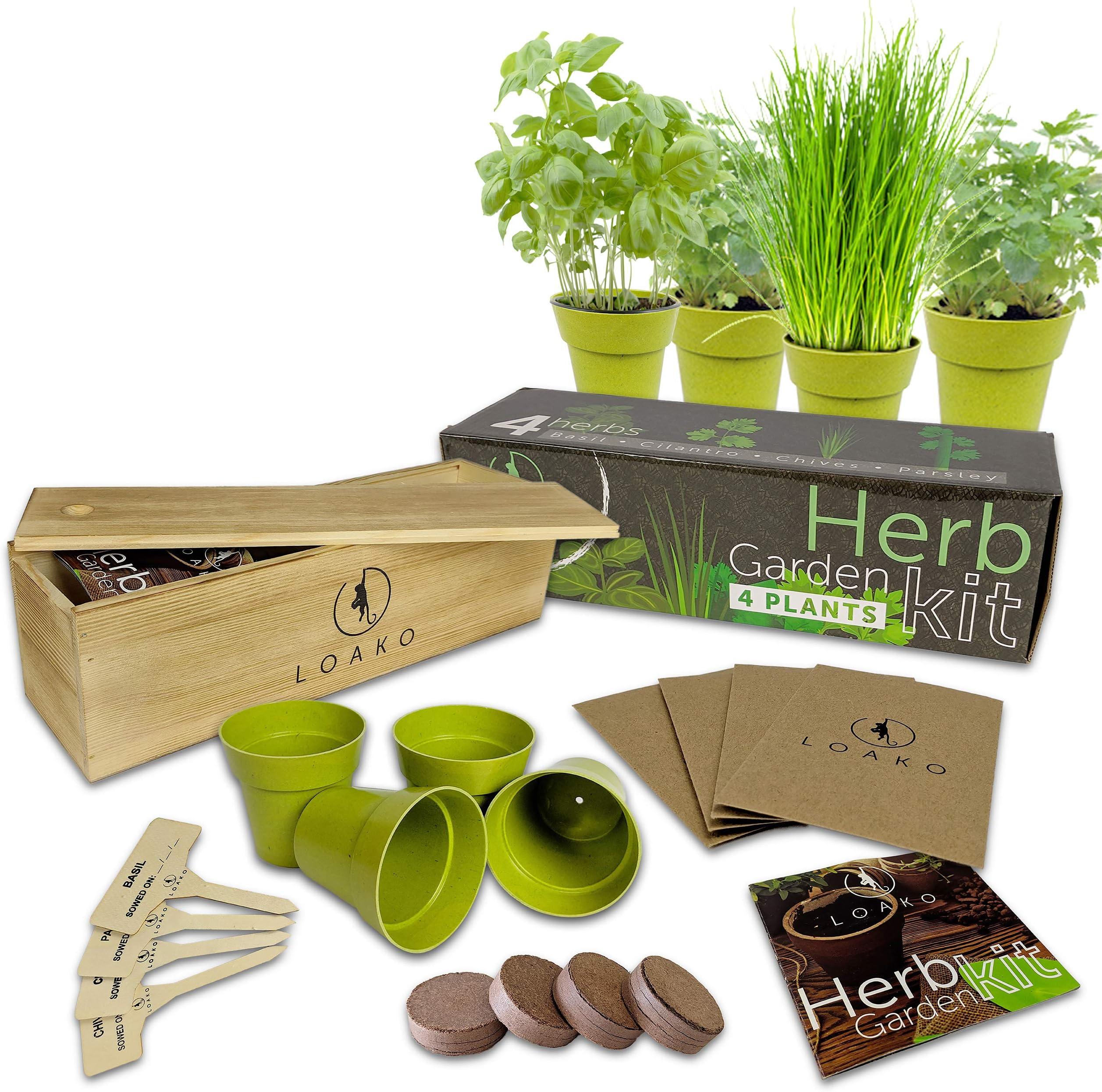 Herb Pail \u2013 Self Contained Grow Kit \u2013 Eco Friendly \u2013 Patio Garden \u2013 Grow Your Own Herbs \u2013 Kitchen Garden Indoor Garden \u2013 Christmas Gift