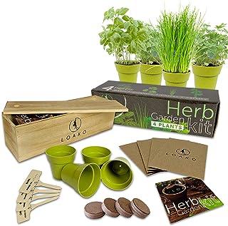 Indoor Herb Garden Starter Kit | 4 Non-GMO Herbs | Beginner Friendly | DIY Kitchen Herbs Growing Kit | Wooden Box | Perfec...
