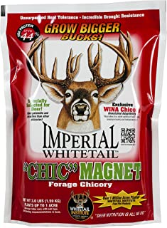 whitetail institute forage oats plus