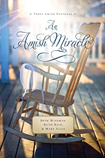 An Amish Miracle: Always Beautiful, Always His Providence, Always in My Heart (English Edition)