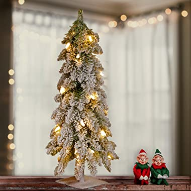 National Tree 24 Inch Snowy Downswept Forestree with 50 Clear Lights with a Metal Plate (FTDf1-24ALO-1), 2 ft