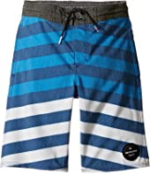 Quiksilver Kids - Crypt Brigg Beach Shorts 14 5 (Toddler/Little Kids)