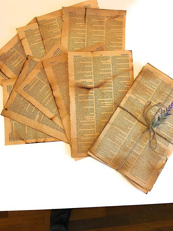 Junk Store Journal Supplies Vintage Paper Pages Book 100% quality warranty! Scrapbooking Bi