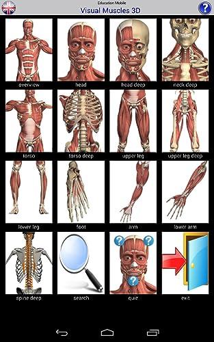 『Visual Muscles 3D』の2枚目の画像