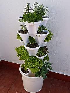 Ecogarden Irisana 72.EG10.B Huerto Vertical hidropónico,