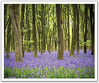 """JP London POS2543 U-Strip Peel and Stick Forest Bluebell Tree Flower Removable Wall Decal Sticker Mural, 19.75"""" by 24"""""""