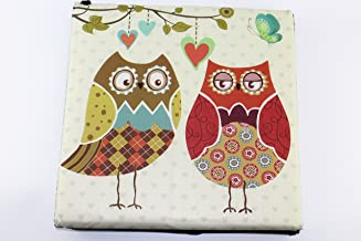 Vintage Style Home Folding Storage Ottoman Bench Seat for Living Room Bedroom (Two Owls)