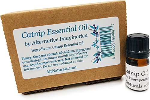wholesale Catnip outlet online sale Essential Oil - Pure Essential high quality Oil in a 5ml Amber Bottle outlet sale