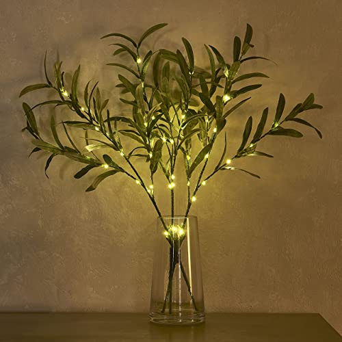 Hairui Lighted Olive Branches with Timer 24IN 45LED Battery Operated for Wedding Christmas Party Home Spring Decor (V...