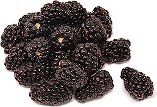 Amae Driscoll Blackberry, 170g