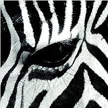 Non-Woven Wallpaper Zebra Crossing Square, 113.4 x 113.4 inches