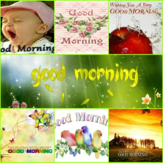 Good Morning Quotes & Cards