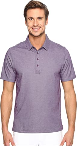 The Ten Year Polo