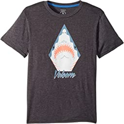Shark Stone Short Sleeve Tee (Big Kids)