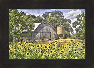 Sunflower Farm II by Lori Deiter 16x22 Flowers Old Weathered Barn Summer Field Framed Art Print Wall Décor Picture