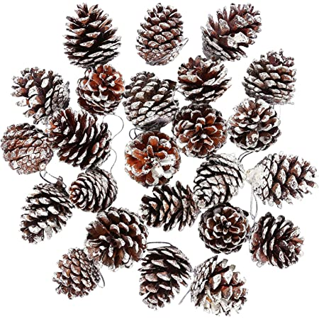 20 Pinecones Natural Christmas Ornament Wired ElementalExchanges ForestFriendly