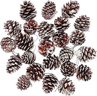 Keriber - Juego de 24 Conos de Pino de Navidad con Cuerda, diseño de Conos de piña Naturales