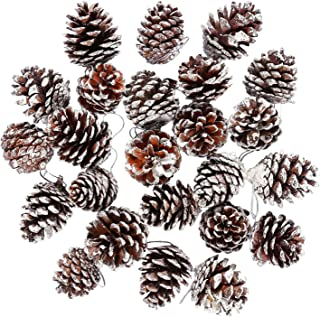 Cooraby 24 Pieces Christmas Pine Cones Ornament Natural PineCones With String Pendant Crafts for Gift Tag Christmas Tree Party Hanging Decoration (Snow)