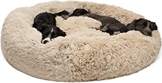 sleep philosophy dog bed