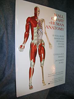 Best wall chart of human anatomy Reviews