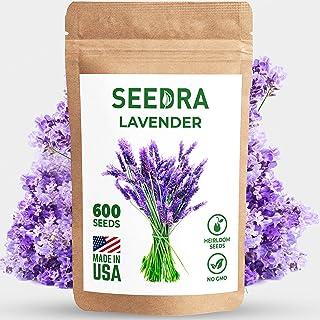 بذر اسطوخودوس انگلیسی SEEDRA برای کاشت داخل و خارج از منزل - 600 دانه/500 میلی گرم - دانه های بدون GMO و بقایای جنسی - جوانه زنی بالای 90 - - 1 بسته