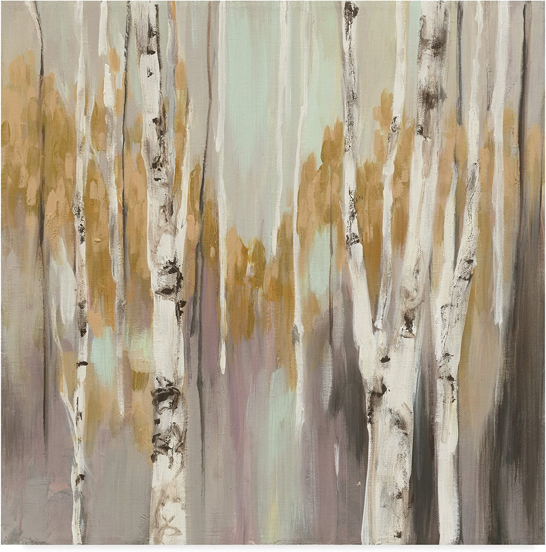 Trademark Fine Art WAP05418-C1414GG Silver Birch II by Julia Purinton Wall Decor, 14 x14 , Multicolor