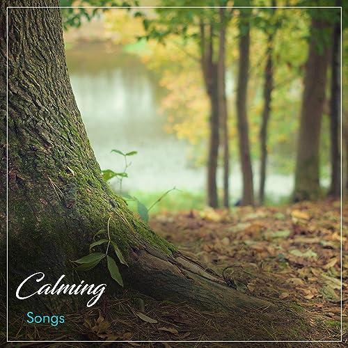 16 Canciones Tranquilizadoras para la Meditación, Yoga Y Spa ...