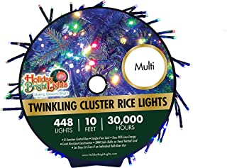 """448 LED Multicolor Twinkling Cluster Rice Lights, 10'x5"""" Garland of Lights, Soft Multicolor Glow, 8 Different Modes - Including Steady & Slow Twinkle, 30,000 Hours of Bright LEDs, Hassle-Free, Perfect"""