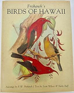 buff hawaiian
