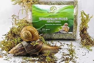 Best pet snail habitat Reviews