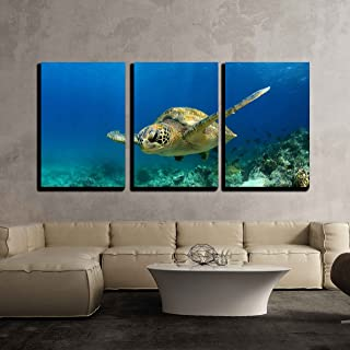 """wall26 3 Piece Canvas Wall Art - Green Sea Turtle Swimming Underwater in Deep Ocean/Sea - Modern Home Decor Stretched and Framed Ready to Hang - 16""""x24""""x3 Panels"""