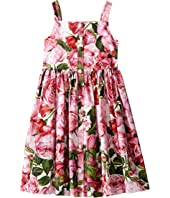 Dolce & Gabbana Kids - Rose Poplin Pleated Dress (Big Kids)