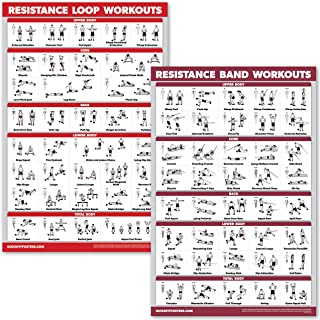 QuickFit 2 Pack - Resistance Bands and Resistance Loops Workout Posters - Set of 2 Laminated Charts - Resistance Band Tubes and Loops Exercise Charts