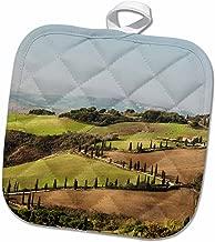3D Rose Italy Zig Zag Road-La Foce in Tuscany. Pot Holder, 8 x 8