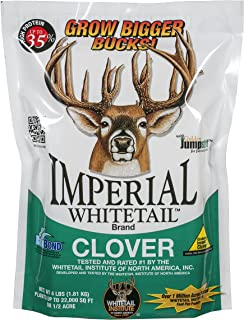 spring whitetail food plots