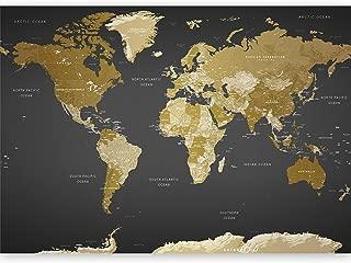 artgeist Wall Mural World Map 192.9
