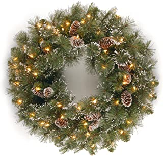 National Tree 24 Inch Glittery Pine Wreath with Cones, Snowflakes and 50 Clear Lights (GP1-300-24W-1)