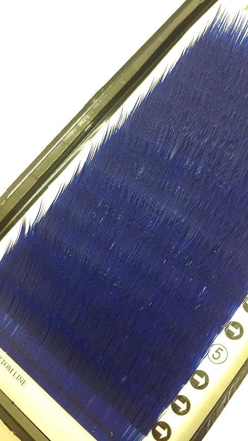 区画日曜日時制ノーブランド品 まつ毛エクステ ミンク/ブルー(Jカール)0.20mm × 13mm