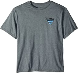 O'Neill Kids - Streaker Short Sleeve Tee Screens Imprint (Big Kids)