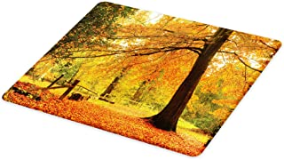 Lunarable Forest Cutting Board, Autumn Fall Forest Scene with Vibrant Colors and Pale Leaves Tranquil Peace Nature, Decorative Tempered Glass Cutting and Serving Board, Large Size, Yellow Brown
