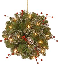 National Tree 12 Inch Glittery Mountain Spruce Kissing Ball with Red Berries, Cones and 35 Battery Operated Warm White LED Lights (GLM1-300-12KBC1)