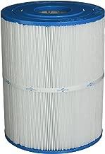 Filbur FC-3960 Antimicrobial Replacement Filter Cartridge for Watkins 65/Hot Springs Pool and Spa Filter