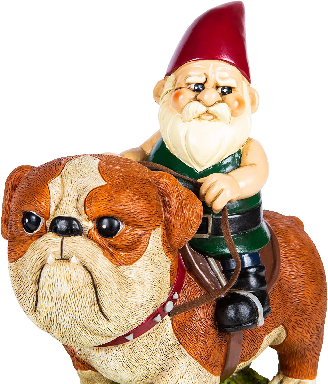 KwirkWorks Garden Gnome Cash special price - English Statue Figurine New arrival Bulldog Lawn