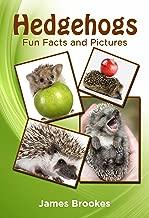 Best brooke the hedgehog Reviews