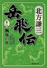 表紙: 岳飛伝 十二 瓢風の章 (集英社文庫)   北方謙三