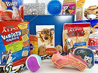 Jumbo Dog Gift Box Basket for Favorite Canine Fur Baby Perfect for Dog Lover Dog Birthday Christmas Furry Pet Friend Prime Treats Toys