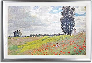 Monet Wall Art Collection Walk in The Meadows at Argenteuil, 1873 by Claude Monet Fine Giclee Prints Wall Art in Premium Quality Framed Ready to Hang 20X28, Silver