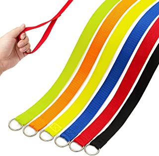 DCSUIT Slip Leads Dog Leash Pet Rope - 6 FT Strong Pulling Durable Leashes with O-Ring,6 Colors Soft Strap for Puppy/Doggi...