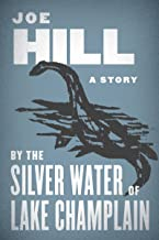 Best the silver child book summary Reviews